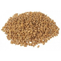 Wheat Malt (Oak Smoked)