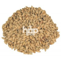 HDP Diastatic Pale Malt 500g