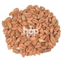 Wheat Malt (Pale)