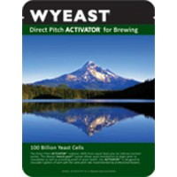 Beer Yeast and Nutrient